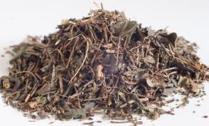 Bacopa (Brahmi) c/s (Organic) - Dried Herb (bulk) (Bacopa monniera)