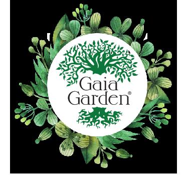 Balm of Gilead - Dried Herb (bulk) (Populus balsamifera)