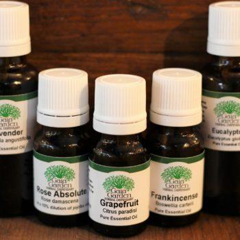 Cardamom - Essential Oil (Elettaria cardamomum)